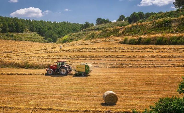 Agricoltura. Il lockdown consolida il Made in Italy? Ecco gli scenari